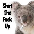 Funky Koala