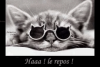 Image attachée: humour4.gif